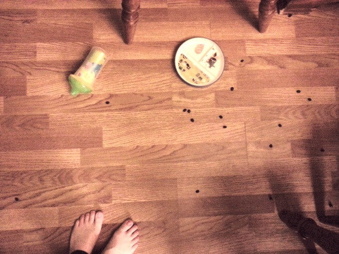 Floor Food Art (not rabbit poop)