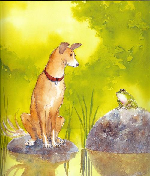 dog-meet-frog